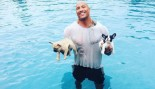 The Rock in pool with dogs thumbnail