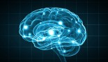 Stronger Muscles Can Lead to Stronger Brain, Study Finds thumbnail