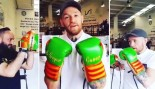 Conor McGregor boxing with Irish gloves. thumbnail