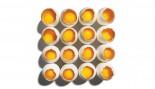 Cracked Eggs With Yolk thumbnail