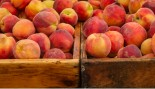 Food of the Month: Peaches thumbnail
