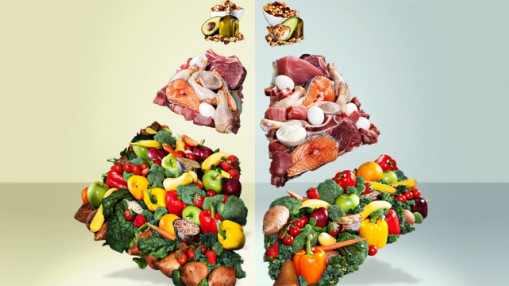 The New and Improved M&F Food Pyramid thumbnail