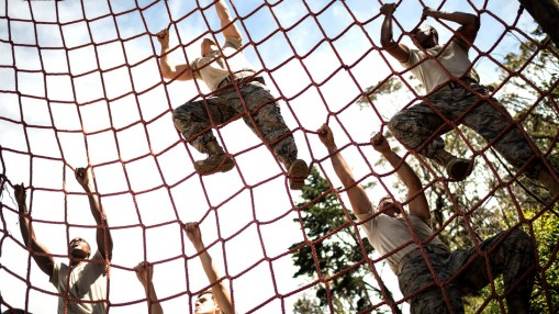Armed-Forces-Climbing-Net-Training thumbnail