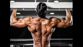 Muscular Man With Wide Back thumbnail