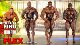 2013 FIBO Prejudging Report - Fitness and Bodybuilding thumbnail