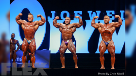2016 Olympia 212 Bodybuilding Call Out Report thumbnail