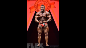 Carlos Ascensio - 2015 IFBB Arnold Europe thumbnail