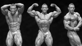 Alves, Mello, King and Anderson Take Orlando thumbnail