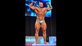 Dalivor Hajek - Men's Open - 2014 IFBB Prague Pro thumbnail