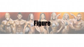 2015 Figure Olympia Call Out Report thumbnail