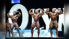 2017 Olympia Pre-Judging Call Out Report thumbnail