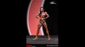Karin Hobbs - Women's Physique Olympia - 2013 Mr. Olympia thumbnail