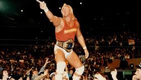 Hulk Hogan  thumbnail