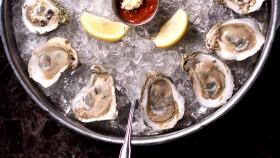 Miniaturas de 10 ostras de proteína subestimadas