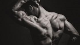 Miniatura del músculo de la espalda