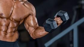 Biceps Training thumbnail