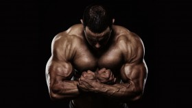 Muscular Bodybuilder thumbnail