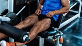 Legs Quads thumbnail