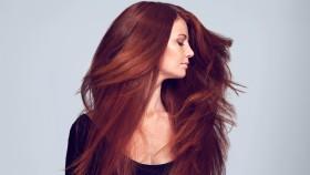 Miniatura de cabello largo y rojo