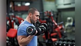 Miniaturas de rizos de bíceps