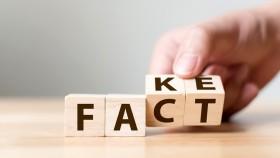 Blocks-With-Fake-Fact thumbnail