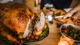 Turkey Thanksgiving thumbnail