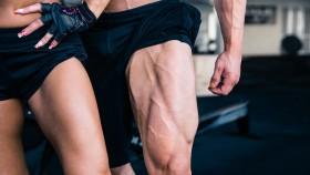 Male-Female-Muscular-Legs-Quads thumbnail