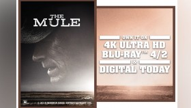 The Mule thumbnail