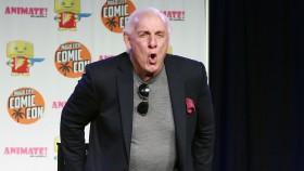 Ric Flair  thumbnail