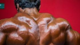 Bodybuilder Shrug Shows Massive Traps thumbnail