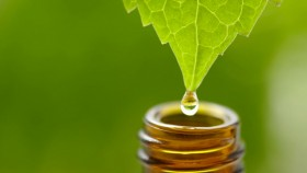 How Adaptogens Can Help Manage Stress thumbnail
