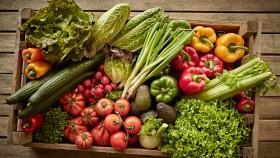 Vegetables thumbnail