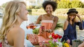 Women Drinking Wine at a Picnic thumbnail