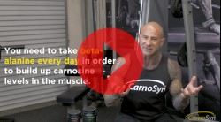 Taking CarnoSyn® Beta-Alanine On Rest Days Video Thumbnail