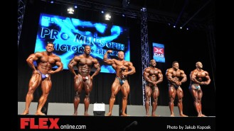 Awards - Men's Bodybuilding - 2014 IFBB Prague Pro Gallery Thumbnail