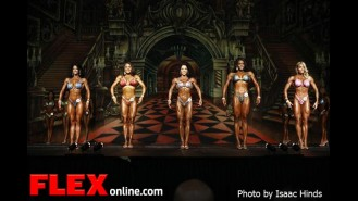 Comparisons - Figure - 2012 Europa Supershow Dallas  Gallery Thumbnail