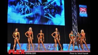 Comparisons - Bikini - 2014 IFBB Prague Pro Gallery Thumbnail