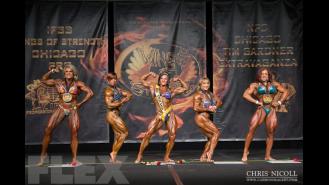 Women's Bodybuilding Awards - 2015 Chicago Pro Gallery Thumbnail