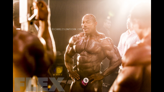 Through the Lens of Charles Lowthian: 2015 Olympia Part 2 Gallery Thumbnail