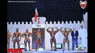 2013 Amateur Olympia - Up to 85kg Gallery Thumbnail