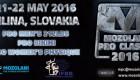 2016 IFBB Mozolani Pro Classic
