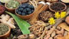 5 Adaptogen Foods That Can Help You Recover Faster and Fight Stress