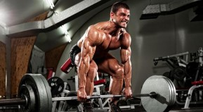 Celebrity Fitness: Gain 10 Pounds of Muscle in 4 Weeks thumbnail