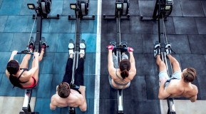 Group-Rowing-Together-Above. thumbnail