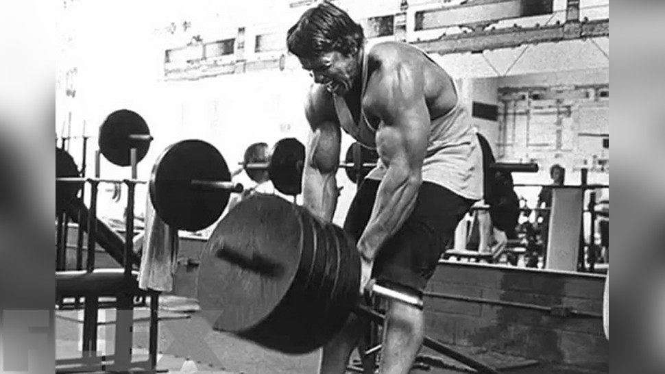 The complete arnold back muscle fitness arnold t bar row malvernweather Gallery