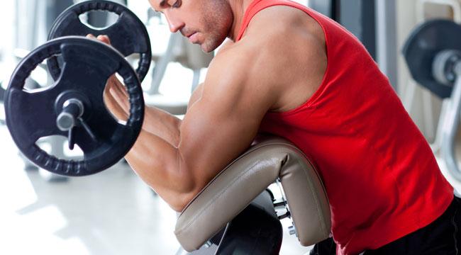 Bodybuilding Diet Tips
